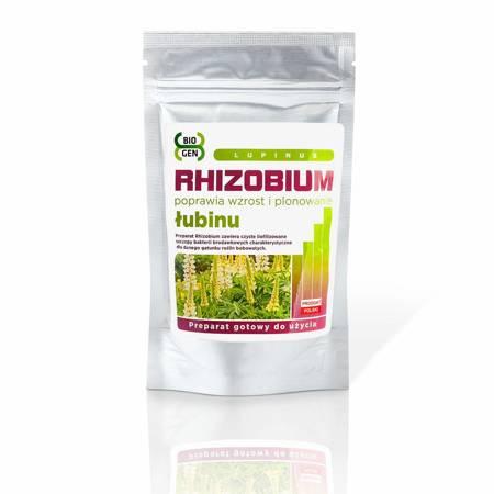 Rhizobium Łubinu (Rhizobium Lupinus)  1 kg